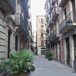 vista dell'edificio dall'inizio della via vicino al bar Adriatico
