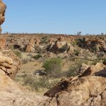 In het Mapungubwe Nat. Park