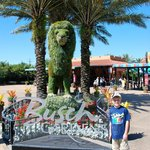 Entrance to Busch Gardens.
