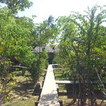 The pathway to the rooms