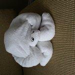 turtle shaped towel in room