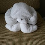 turtle shaped towel in room