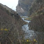 On the walk from the Inn to Heddon's Mouth