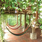 "The ""hammock patio"". One of the more popular areas for our guests..."