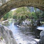 Pony Y Pair Bridge