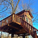 Maple Oak treehouse