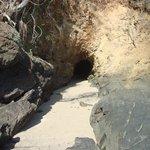 bat cave during kayak tour