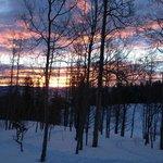 Sunrise from cabin.