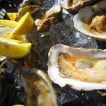 Raw Oysters...yum!