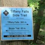This way to the Falls