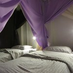 Canopy bed 3