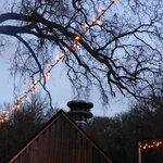 So beautiful at the Barn