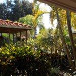 view out my window/door