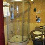 Enclosed shower