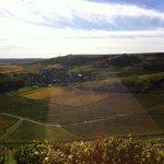Prachtige wijngaarden