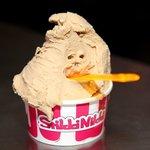 1 scoop gelato