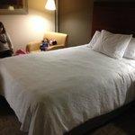 2 camas de casal de tamanho normal