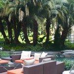 lounge / pool