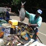 Fresh fish everyday