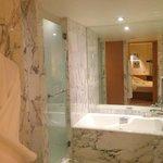 Nice Bathroom, great water pressure