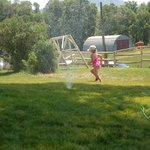 Running Through the Sprinklers on the Front Lawn