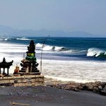 Bali Dreamers
