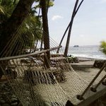 Relaxing on the beach in a hammock