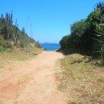 Camino y asoma el paisaje