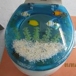 Unusual toilet seat and cover