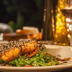 salmon dinner with pinotage