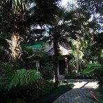 un bungalow dans le jardin