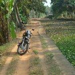 balade en moto entre rizières, maisons et canaux