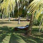 Отдыхать можно на таких лежаках под пальмами, океан рядом