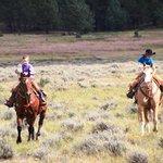 Giovani Cowboy
