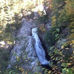 Falls in the Moosalamoo National Recreation Area