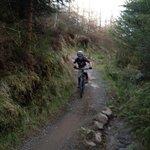 East Coast adventure Rostrevor trails