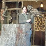 Saw the zoo show...loved the owl!