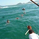 nadando