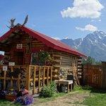 Entrance of the Reindeer farm tour