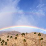 The morning desert was kissed by God's halo of promise