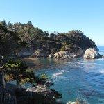 Point Lobos Coastal Trail
