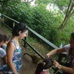 Parque das Cataratas Brasil
