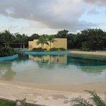 We had envisioned a more natural setting than the small pools at Dolphinaris Park Riviera Maya