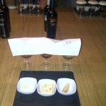 testing in wineyard