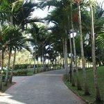 Chemin sur le resort
