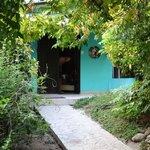 Tucans nest :)