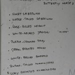 List at Butterfly house