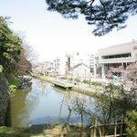 ホテルと桜並木