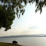 Au bord du lac, à Ganeshapark