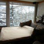 Sofa cama del living